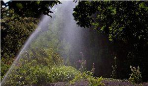 Aspersores de riego agricolas y para jardines