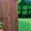 Cerramiento corteza pino