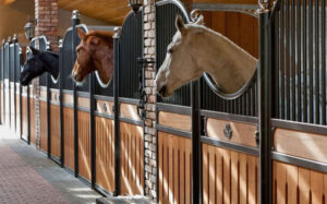 Suelo_para_caballos